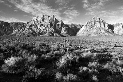 Фотообои Геологическое Рок Формирования Red Rock Canyon Лас-Вегас США