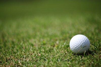 Фотообои Мяч для гольфа в траве