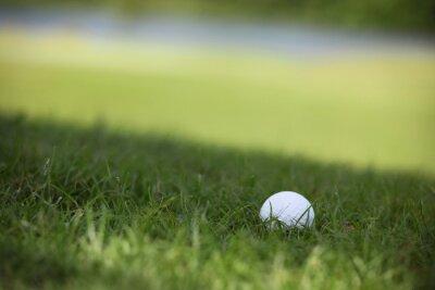 Фотообои Мяч для гольфа на курсе