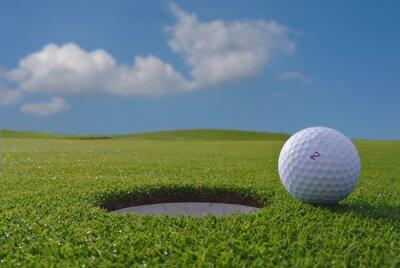 Фотообои гольф отверстие и мяч