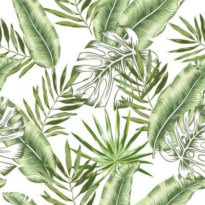 Фотообои Зеленый банан, monstera пальмовых листьев с белым фоном. Векторный бесшовные модели. Иллюстрация тропических джунглей листвы. Озеленение экзотических растений. Летний пляж цветочный дизайн. Райский ха