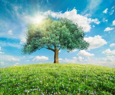 Фотообои Зеленое дерево весенний пейзаж