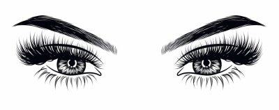 Фотообои Ручная нарисованная женская сексуальная макияж выглядит с прекрасно подобранными бровями и дополнительными полными ресницами. Идея для визитной карточки, типографический вектор. Идеальный салонный взг