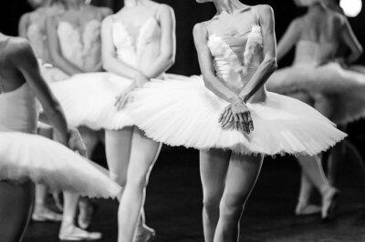 Фотообои Руки балерин. Руки балерин. Балет заявление. Большие балерин. Балерины в движении.