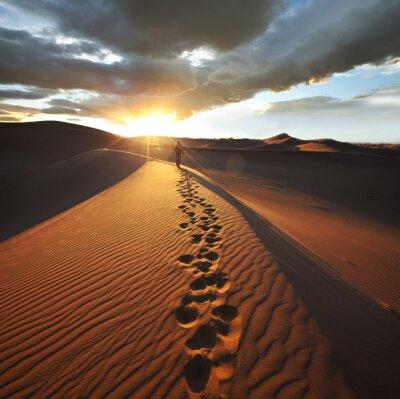 Фотообои Поход в пустыне