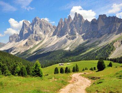 Фотообои Туризм путь в Альпах