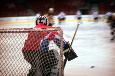 Фотообои Хоккейный вратарь