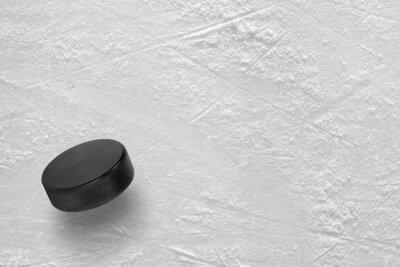 Фотообои Хоккейная шайба на льду