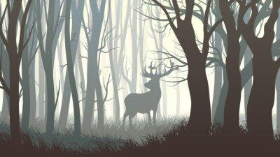 Фотообои Горизонтальные иллюстрации диких лося в лесу.