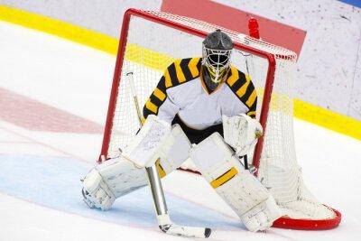 Фотообои Ice Hockey Goalie