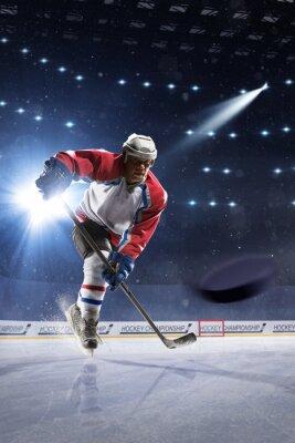 Фотообои Хоккеист на ледовой арене