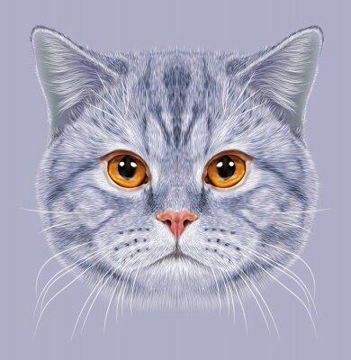 Фотообои Иллюстрация Портрет британской кошки короткие волосы. Симпатичные серый полосатый кот домашнего кота с оранжевыми глазами.