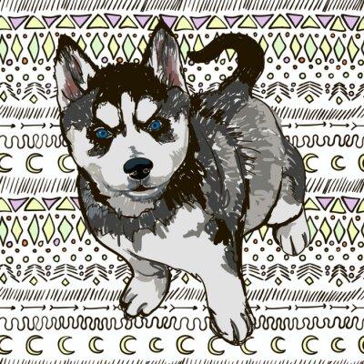 Фотообои Иллюстрация собаки породы хаски