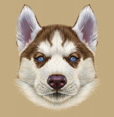 Фотообои Показательный Портрет Husky Puppy. Симпатичные портрет молодой меди красной двухцветной собаки с бледно-голубыми глазами.