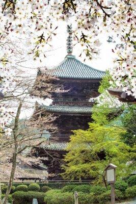 Фотообои Изображение красивых сакуры seasnon в Киото, Япония