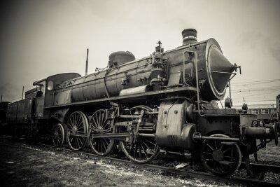 Фотообои Железный конь