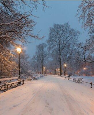 Фотообои Краков, Польша, аллея в парке озера Planty утром во время снега.