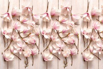 Фотообои kwiat magnolii, kwiat, roślina, biała, beuty, galąź, drzewo magnolii, kwiatowy, fiolet, kwitnienie, flora, botanika, ornament z magnolii, kompozycja magnolii, układ kwiatów magnolii, pąki magnolii, fl
