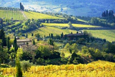 Фотообои Пейзаж в Кьянти, Тоскана, Италия
