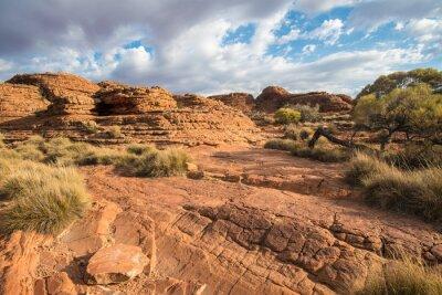 Фотообои Пейзаж каньона Королей в Северной территории, Австралия.