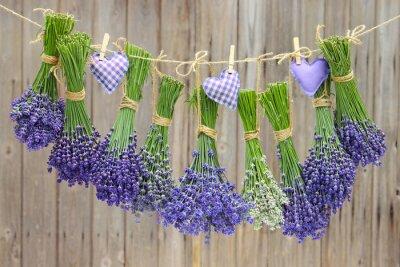 Фотообои Lavendel