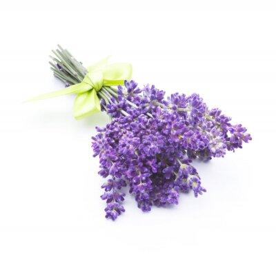 Фотообои цветы лаванды