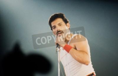 Фотообои Лейден, Нидерланды - 27 ноября 1980: Freddy Mercury певец британской королевы группы во время концерта в Groenoordhallen в Лейдене в Нидерландах
