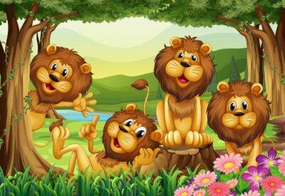 Фотообои Лев живет в джунглях
