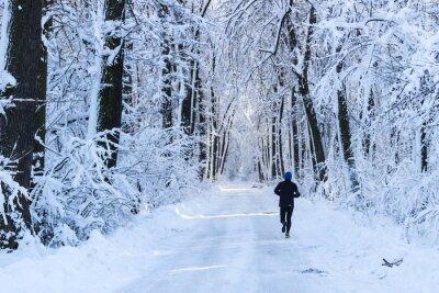Фотообои Человек работает в лесу в зимнее время