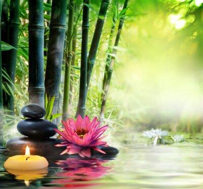 Фотообои massage in nature - lily, stones, bamboo - zen concept