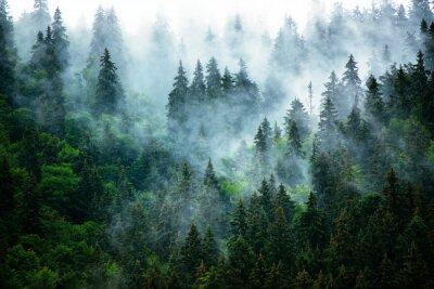 Фотообои Туманный горный пейзаж