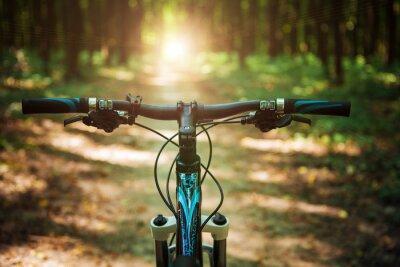 Фотообои Горный велосипед вниз холма быстро сходящего на велосипеде. Вид из