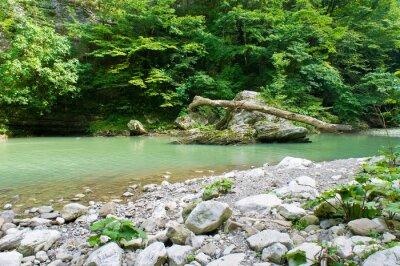 Фотообои Горная река на Кавказе близ Сочи