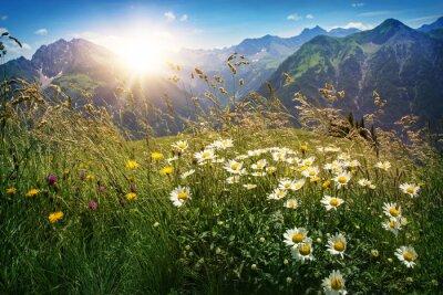 Фотообои Горы пейзаж в Форарльберг