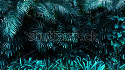 Фотообои тропические лись лесных свечение в темном фоне. Высокий контраст.