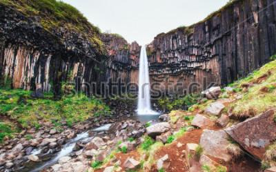 Фотообои Великолепный вид на водопад Свартифосс. Драматическая и живописная сцена. Популярная достопримечательность. Исландия, Европа