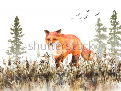 Фотообои Акварельная живопись. Рисованная анималистическая иллюстрация. Красная лиса идет по увядающему лугу. Осенняя сцена с движением диких хищников, елки в тумане и сушеная трава.