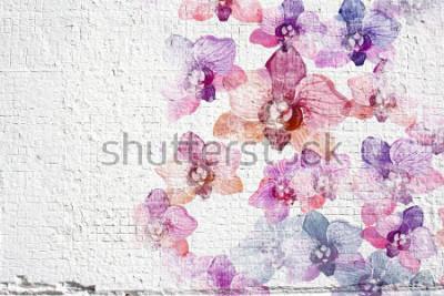 Фотообои Абстрактные белые стены стены штукатурки. Настенная штукатурки с цветными акварельными цветами орхидей.