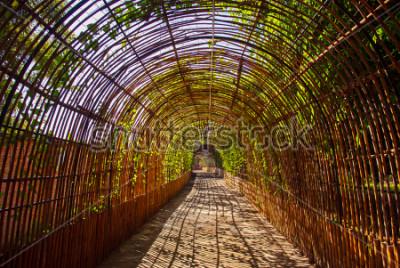 Фотообои Бамбуковая кривая деревянный туннель в парке