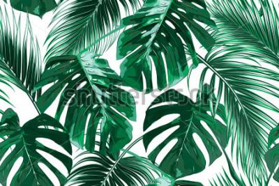 Фотообои Тропические пальмы, листья джунглей