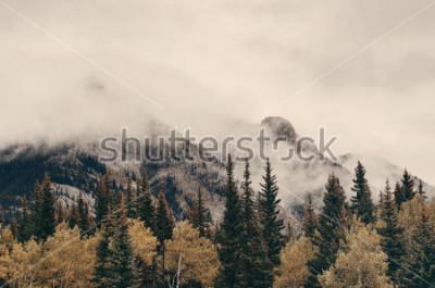 Фотообои Горы и лес национального парка Банф туманные в Канаде.