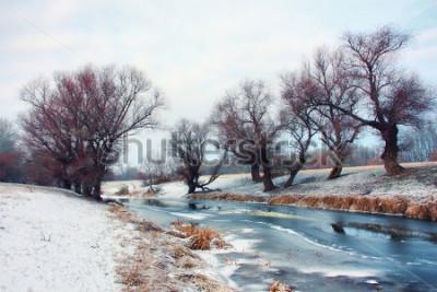Фотообои Река зимой