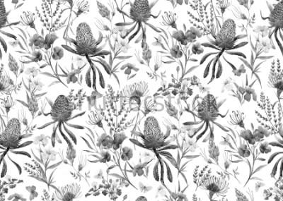 Фотообои Акварель с тропическим рисунком, цветы, апельсиновая банка, розовый олеандр, экзотические австралийские цветы, красные цветки Eremophila dichroantha. монохромный черно-белый узор
