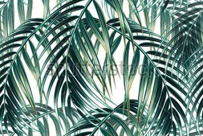 Фотообои Тропические пальмы листья бесшовные векторные цветочный узор фона
