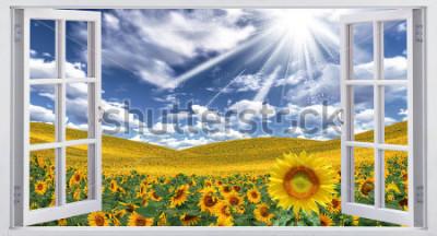 Фотообои Красивый летний пейзаж, вид из окна