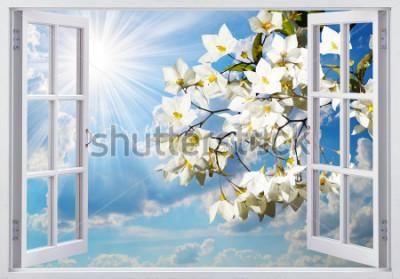 Фотообои Прекрасный вид из окна
