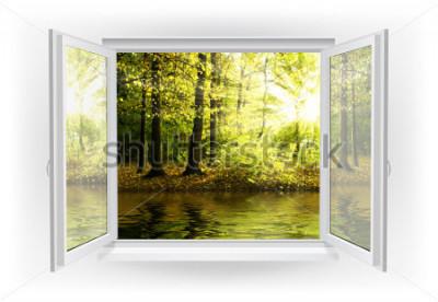 Фотообои Открытое окно с лесом на фоне