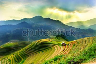 Фотообои Rice fields on terraced of Mu Cang Chai, YenBai, Vietnam. Vietnam landscapes.