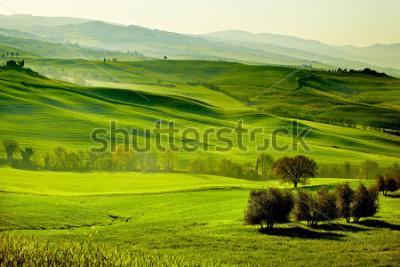 Фотообои Countryside, San Quirico d`Orcia , Tuscany, Italy