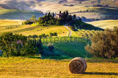 Фотообои Tuscany, Italian Countryside, landscape